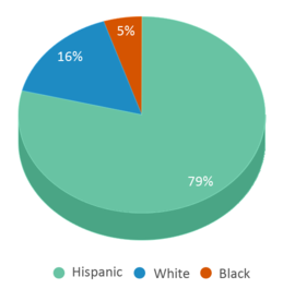 This chart display the percentage breakdown of students of all ethnic groups in Goodnight Middle School.