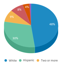 This chart display the percentage breakdown of students of all ethnic groups in Hazelwood Elementary School.