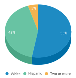 This chart display the percentage breakdown of students of all ethnic groups in Schurz Elementary School.