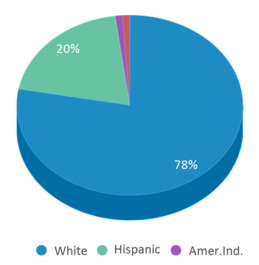 This chart display the percentage breakdown of students of all ethnic groups in Meadowlark Elementary School.