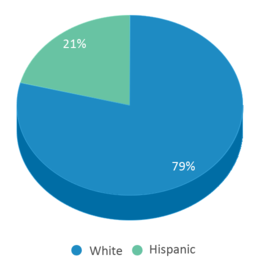 This chart display the percentage breakdown of students of all ethnic groups in Superior Elementary School.