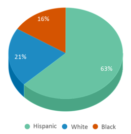 This chart display the percentage breakdown of students of all ethnic groups in Vision.