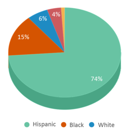This chart display the percentage breakdown of students of all ethnic groups in Vista Del Lago High School.