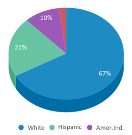 This chart display the percentage breakdown of students of all ethnic groups in Acorn To Oaks Charter.