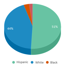 This chart display the percentage breakdown of students of all ethnic groups in Juniper Tree Academy.