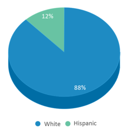 This chart display the percentage breakdown of students of all ethnic groups in Earl B Lundy Elementary School.
