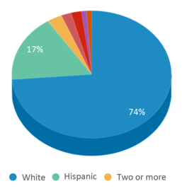 This chart display the percentage breakdown of public school students of all ethnic groups in UT.