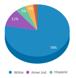 This chart display the percentage breakdown of public school students of all ethnic groups in MT.