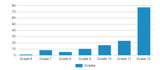 This chart display the students of Plainfield Academy by grade.