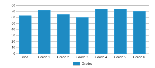 This chart display the students of Timpanogos Academy by grade.